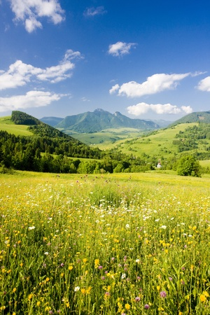 Mala Fatra, Slovakia Stock Photo - 10421233