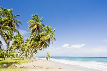 grenada: Sauteurs Bay, Grenada