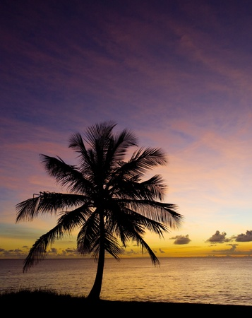 sunset over Caribbean Sea, Barbados photo