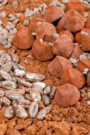 cacao beans: trufas de chocolate y cacao en grano de cacao