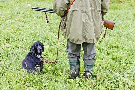 hunting dog with hunter photo
