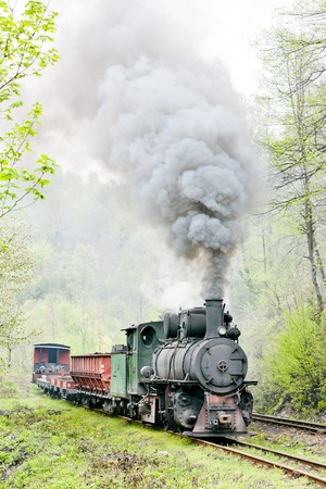 yugoslavia federal republic: narrow gauge railway, Banovici, Bosnia and Hercegovina