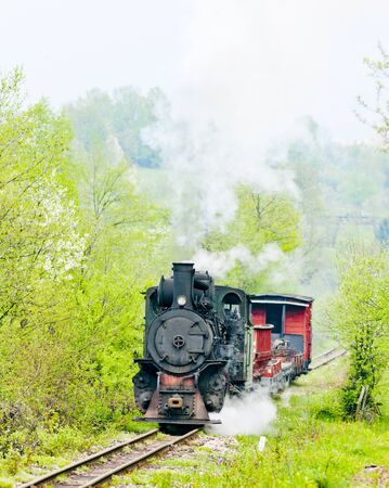 narrow gauge railway, Banovici, Bosnia and Hercegovina Stock Photo - 10546721