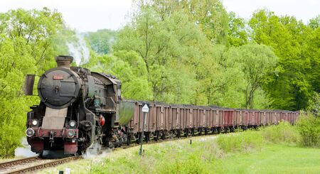 bosnia hercegovina: steam freight train in Tuzla region, Bosnia and Hercegovina