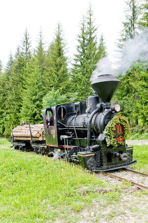 logging railroads: vapore treno, Museo di Kysuce villaggio, Vychylovka, Slovacchia Archivio Fotografico