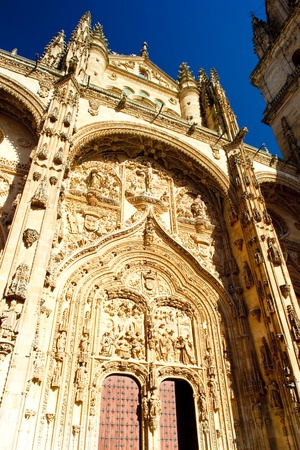 gothic build: detail of gothic cathedral, Salamanca, Castile and Leon, Spain