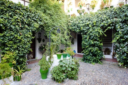 patio (courtyard), Cordoba, Andalusia, Spain Stock Photo