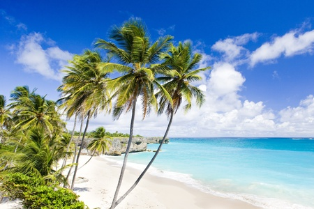 Bottom Bay, Barbados, Caribbean photo