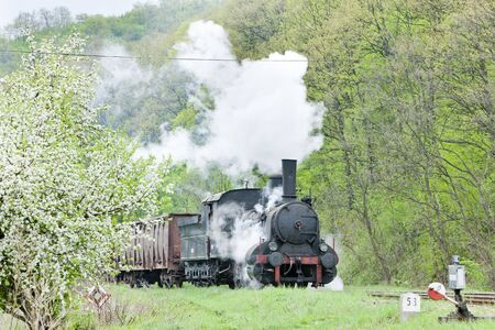 steam traction: steam freight train (126.014), Resavica, Serbia