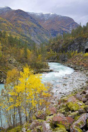 falltime: Jostendalen valley, Norway