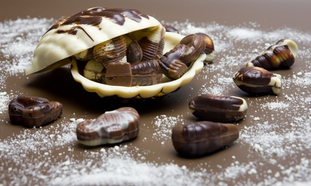 still life of Belgian pralines photo