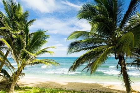 barbados: Martins Bay, Barbados, Caribbean Stock Photo