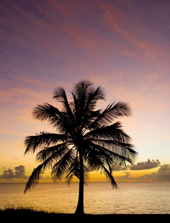 seascapes: sunset over Caribbean Sea, Barbados