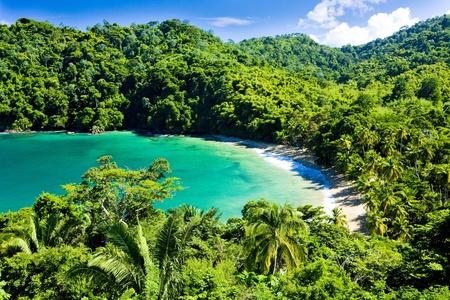 Anglais de la baie, Tobago Banque d'images