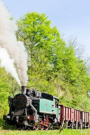 steam freight train, Durdevik, Bosnia and Hercegovina Stock Photo - 11348127