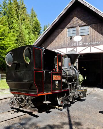 logging railroads: steam locomotive, Museum of Kysuce village, Vychylovka, Slovakia