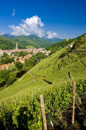 Grand Cru, Thann, Alsace, France