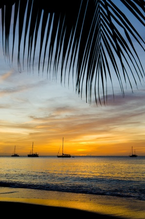 sunset over the Caribbean Sea, Grand Anse Bay, Grenada photo