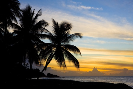 sunset over Caribbean Sea, Turtle Beach, Tobago photo
