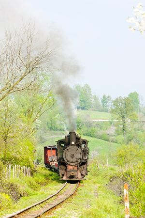 narrow gauge railway, Banovici, Bosnia and Hercegovina Stock Photo - 12099223