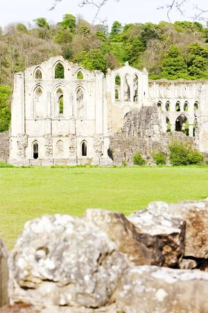 abbey ruins abbey: ruins of Rievaulx Abbey, North Yorkshire, England