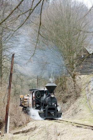 steam train, Ciernohronska Railway, Slovakia Stock Photo - 12342329