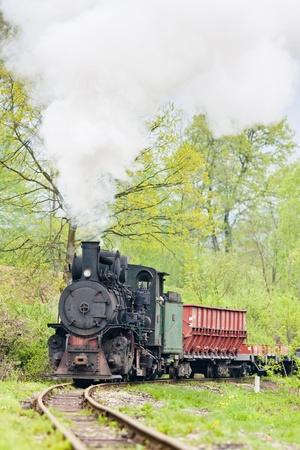 narrow gauge railway, Banovici, Bosnia and Hercegovina Stock Photo - 12338403