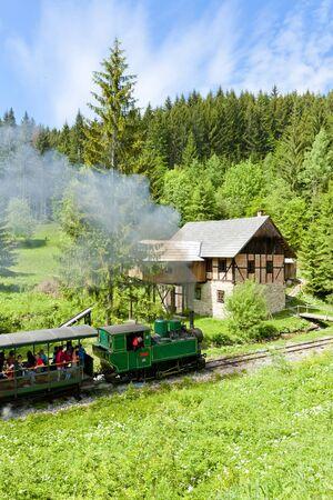 logging railroads: treno a vapore e la vecchia segheria, Museum of Kysuce villaggio, Vychylovka, Slovacchia