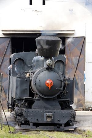 logging railroads: ultimo giorno di servizio di CKD vapore locomotiva n. 5 (1.4.2008), Ciernohronska Railway, Slovacchia Editoriali