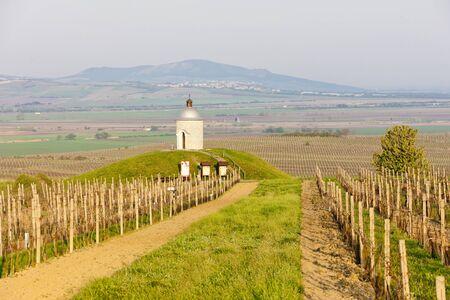 chapel with vineyard near Velke Bilovice, Czech Republic Stock Photo