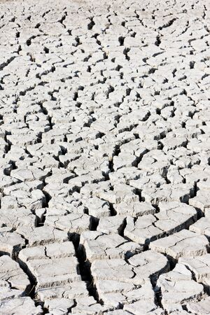 dry soil, Parc Regional de Camargue, Provence, France photo