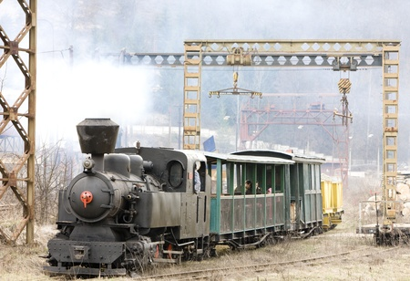 last day of service of CKD steam locomotive n. 5 (1.4.2008), Ciernohronska Railway, Slovakia Stock Photo - 13185328