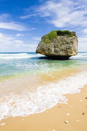 Bathsheba, Eastern coast of Barbados, Caribbean 写真素材
