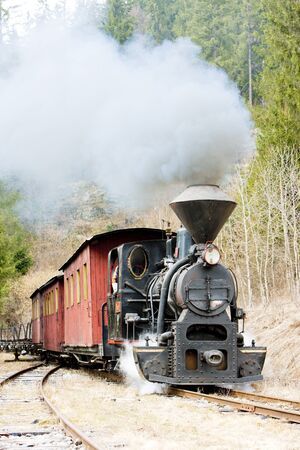 logging railway: steam train, Ciernohronska Railway, Slovakia