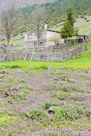 hercegovina: house destroyed during war, Bosnia and Hercegovina