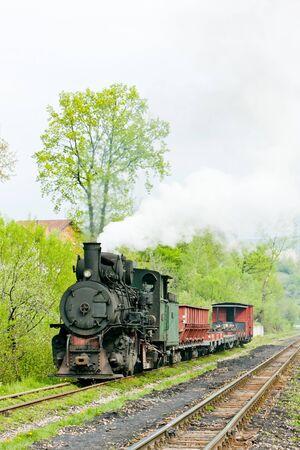 bosna: ferrovia a scartamento ridotto, Banovici, Bosnia-Erzegovina