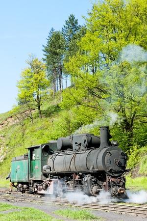 hercegovina: steam locomotive, delivery point in Oskova, Bosnia and Hercegovina