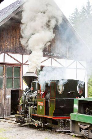 logging railroads: locomotiva a vapore, Museo di Kysuce villaggio, Vychylovka, Slovacchia Editoriali