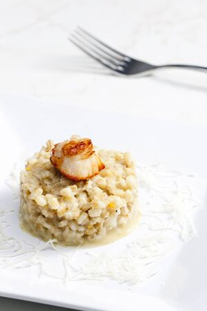 coquille: fried Saint Jacques mollusc with pearl barley risotto Stock Photo