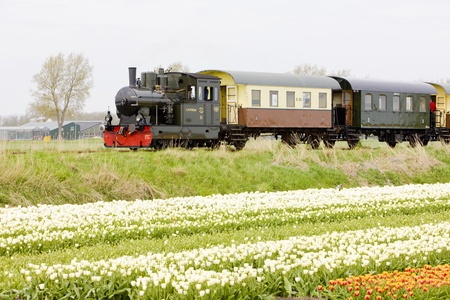 steam train, Hoorn - Medemblik, Noord Holland, Netherlands Stock Photo - 13512822