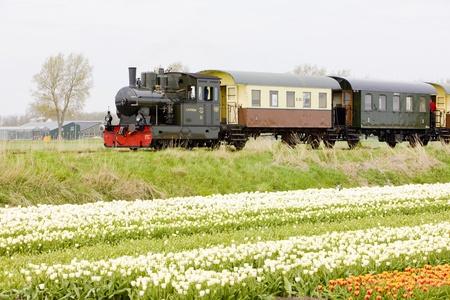 train à vapeur, Hoorn - Medemblik, Noord-Holland, Pays-Bas Éditoriale