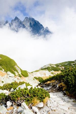 tatras tatry: Great Cold Valley, Vysoke Tatry (High Tatras), Slovakia