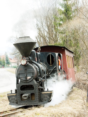 forest railroad: steam train, Ciernohronska Railway, Slovakia