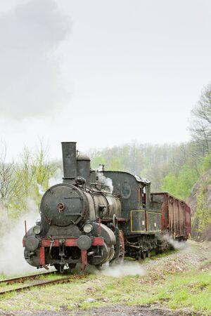steam freight train (126.014), Resavica, Serbia