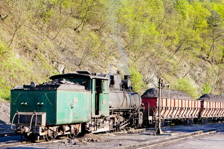 bosnia hercegovina: steam freight train, delivery point in Oskova, Bosnia and Hercegovina