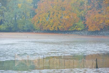 falltime: harvesting pond, Czech Republic Stock Photo