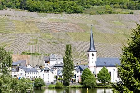 moseltal: Piesport, Rhineland-Palatinate, Germany