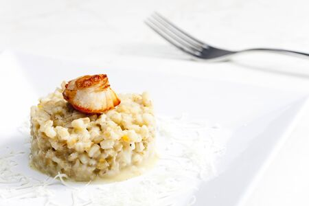 fried Saint Jacques mollusc with pearl barley risotto photo