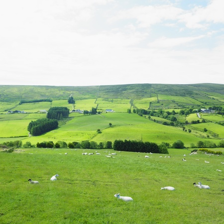 Sperrin Mountains, County Tyrone, Northern Ireland Stock Photo - 13894488