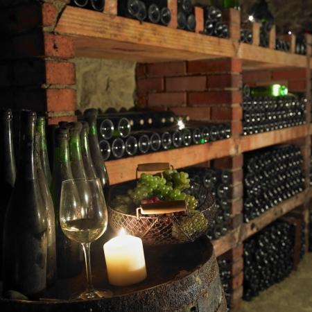 cave à vin, Bily sklep rodiny Adamkovy, Chvalovice, République tchèque Banque d'images